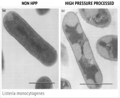 אריזה בלחץ גבוה, HPP